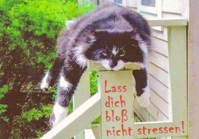 Lass dich bloß nicht stressen