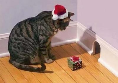 Weihnachtsfalle