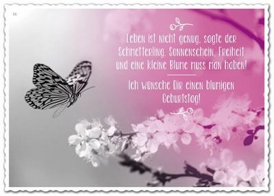 Leben ist nicht genug, sagte der Schmetterling. Sonnenschein, Freiheit und eine kleine Blume muss man auch haben. Hans Christian Andersen
