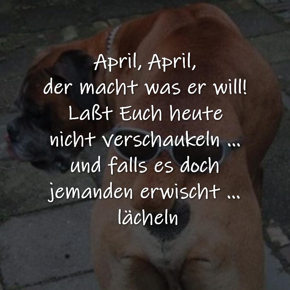 April, April, der macht was er will! Laßt Euch heute nicht verschaukeln … und falls es doch jemanden erwischt … lächeln
