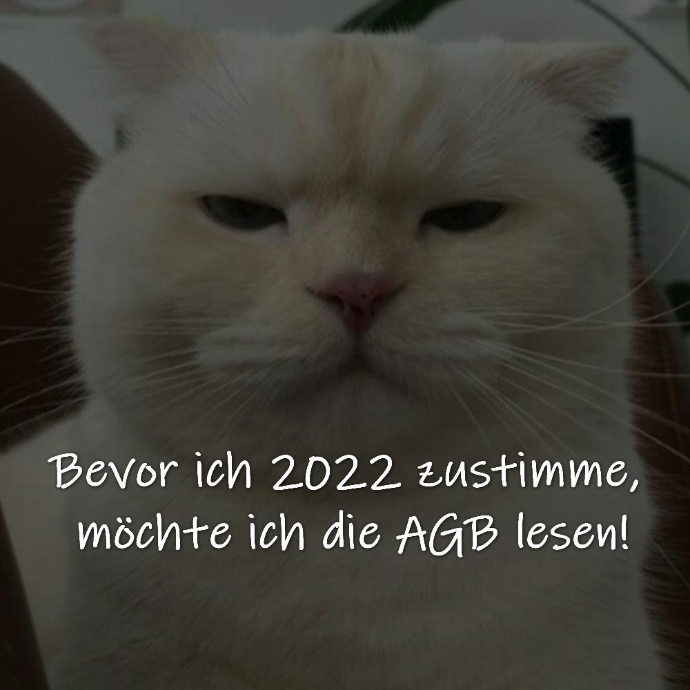 Bevor ich 2022 zustimme, möchte ich die AGB lesen!