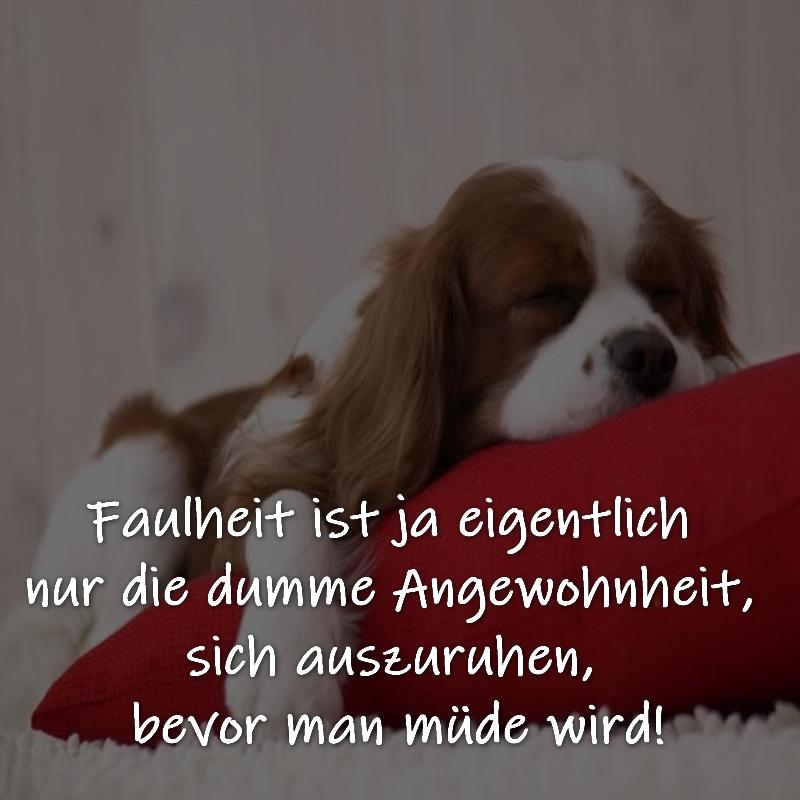 Faulheit ist ja eigentlich nur die dumme Angewohnheit, sich auszuruhen, bevor man müde wird!