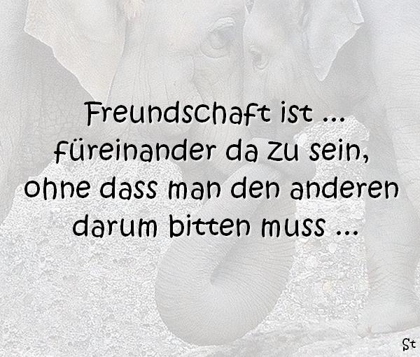 Freundschaft ist ... füreinander da zu sein, ohne dass man den anderen darum bitten muss ...