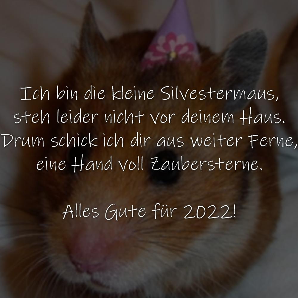 Ich bin die kleine Silvestermaus, steh leider nicht vor deinem Haus. Drum schick ich dir aus weiter Ferne, eine Hand voll Zaubersterne. Alles Gute für 2022!