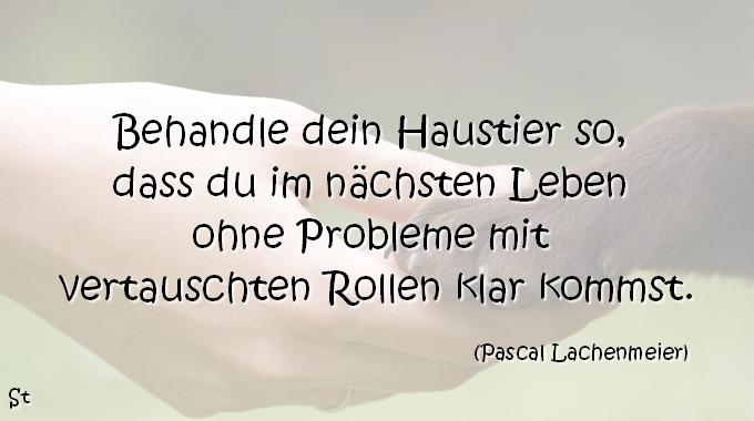 Pascal Lachenmeier