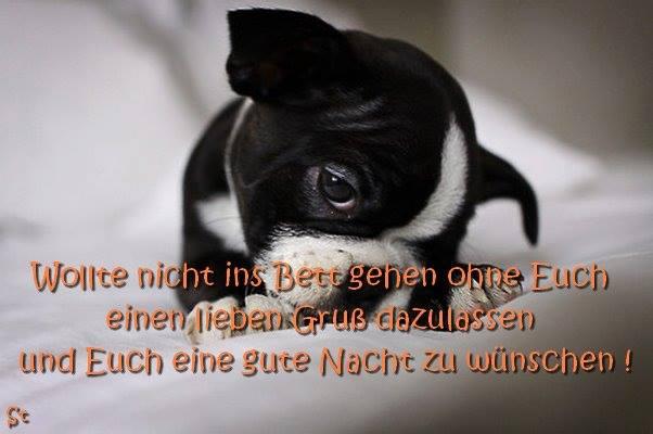 liebe Nachtgrüße