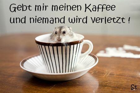 Gebt mir meinen Kaffee und niemand wird verletzt